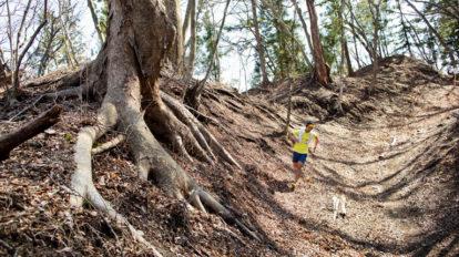 Tarzan Trails GPSデータ[ 碓氷峠]トレイル NO.789