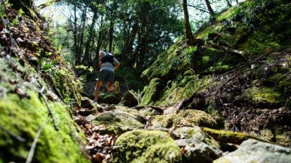 Tarzan Trails GPSデータ[大地峠 ]トレイル NO.790