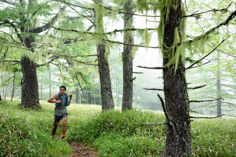 Tarzan Trails GPSデータ[千頭星山]トレイル NO.793