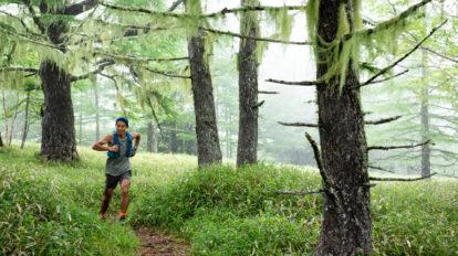 Tarzan Trails GPSデータ[千頭星山 ]トレイル NO.793