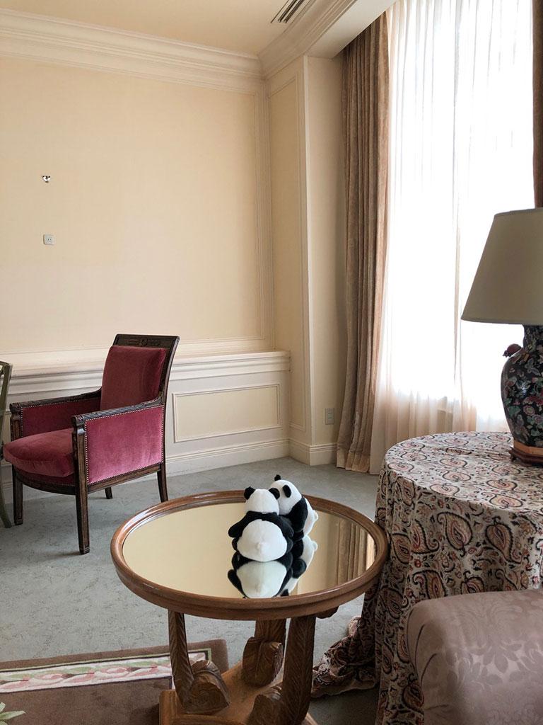 ホテルのスイートルームでの撮影に緊張気味のアンアンパンダの姿も。