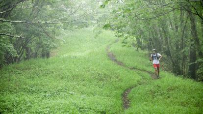 Tarzan Trails GPSデータ[小楢山 ]トレイル NO.795