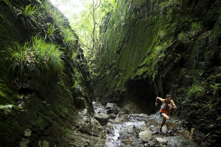 Tarzan Trails GPSデータ[棒ノ嶺]トレイル NO.796