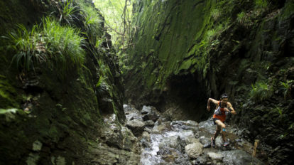 Tarzan Trails GPSデータ[棒ノ嶺 ]トレイル NO.796
