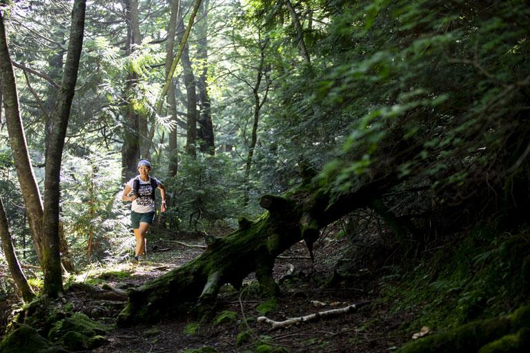 Tarzan Trails GPSデータ[奥日光]トレイル NO.797