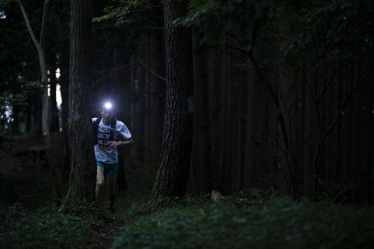 Tarzan Trails GPSデータ[奥多摩]トレイル NO.805