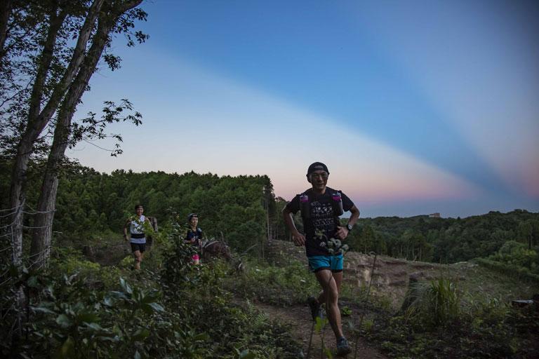 Tarzan Trails GPSデータ[フクロウ24]トレイル NO.818