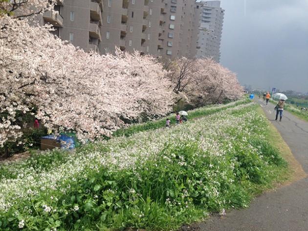 masuda_vol21_6