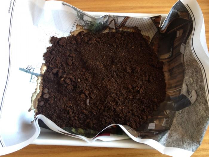 抽出の終わったコーヒーかすを乾燥させる。